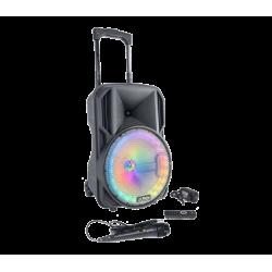 PARTY-10RGB nešiojama įkraunama garso sistema su laidiniu mikrofonu USB/TF/AUX/Bluetooth, 10′′